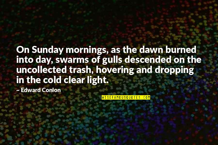 Morning Light Quotes By Edward Conlon: On Sunday mornings, as the dawn burned into