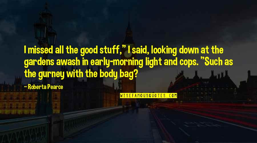 """Morning Light Quotes By Roberta Pearce: I missed all the good stuff,"""" I said,"""