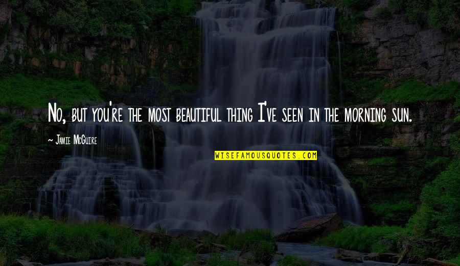 Morning Sun Quotes By Jamie McGuire: No, but you're the most beautiful thing I've