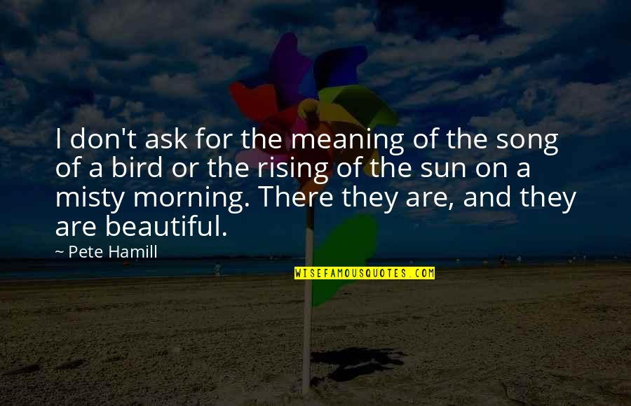 Morning Sun Quotes By Pete Hamill: I don't ask for the meaning of the
