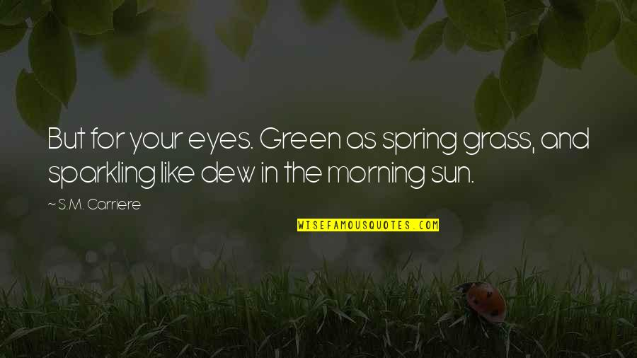 Morning Sun Quotes By S.M. Carriere: But for your eyes. Green as spring grass,