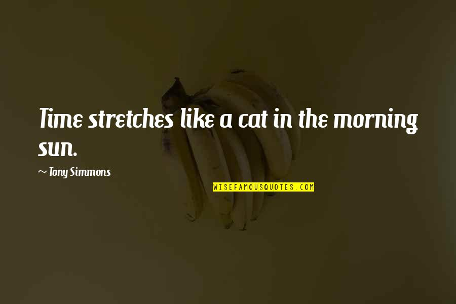 Morning Sun Quotes By Tony Simmons: Time stretches like a cat in the morning