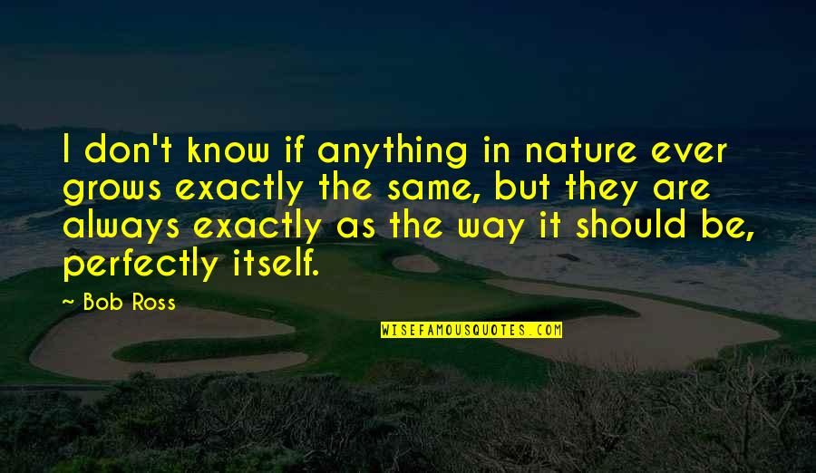 Morning With Nature Quotes By Bob Ross: I don't know if anything in nature ever
