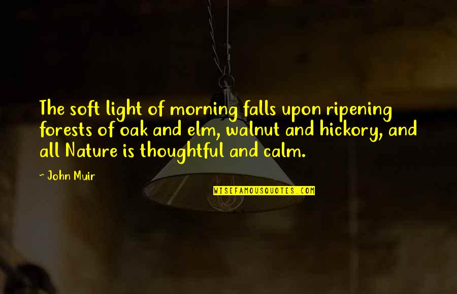 Morning With Nature Quotes By John Muir: The soft light of morning falls upon ripening