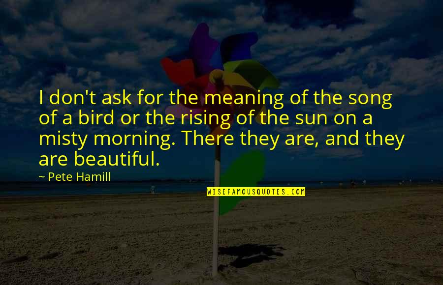 Morning With Nature Quotes By Pete Hamill: I don't ask for the meaning of the