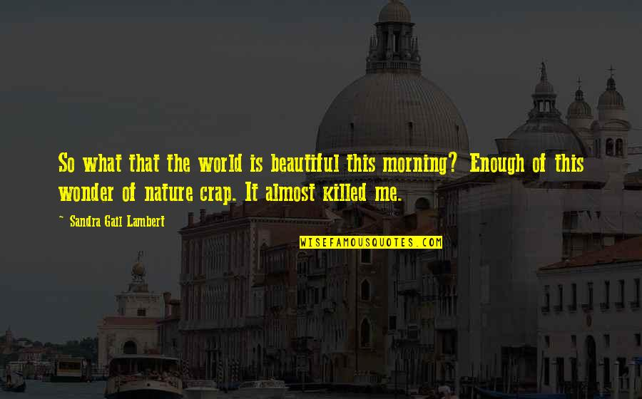 Morning With Nature Quotes By Sandra Gail Lambert: So what that the world is beautiful this