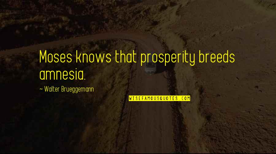 Moses Quotes By Walter Brueggemann: Moses knows that prosperity breeds amnesia.