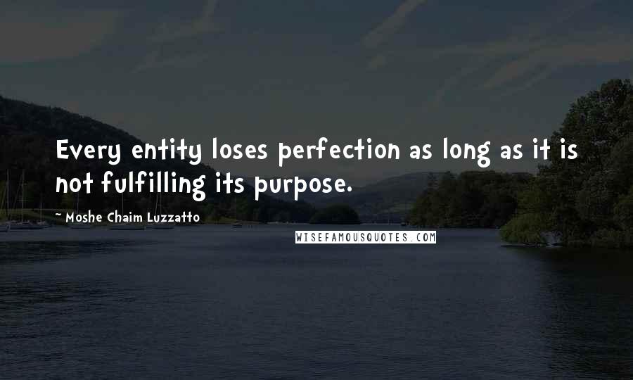 Moshe Chaim Luzzatto quotes: Every entity loses perfection as long as it is not fulfilling its purpose.