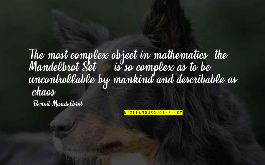 Most Complex Quotes By Benoit Mandelbrot: The most complex object in mathematics, the Mandelbrot