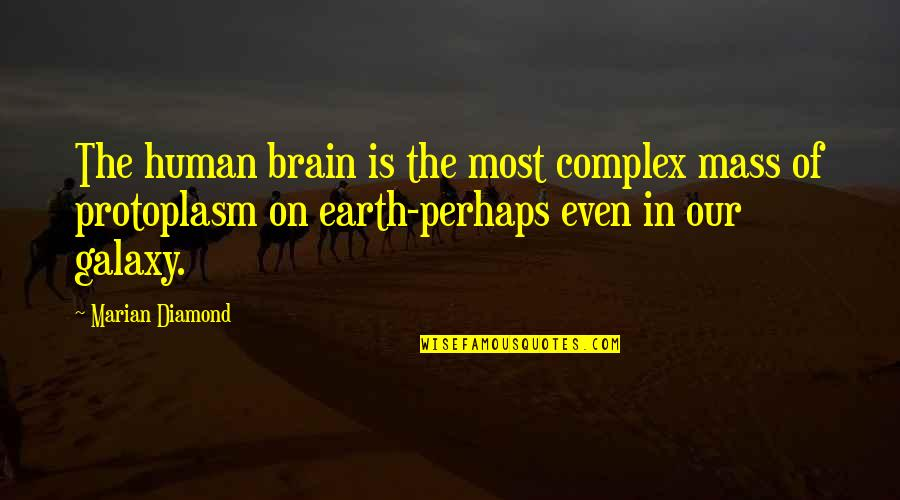 Most Complex Quotes By Marian Diamond: The human brain is the most complex mass