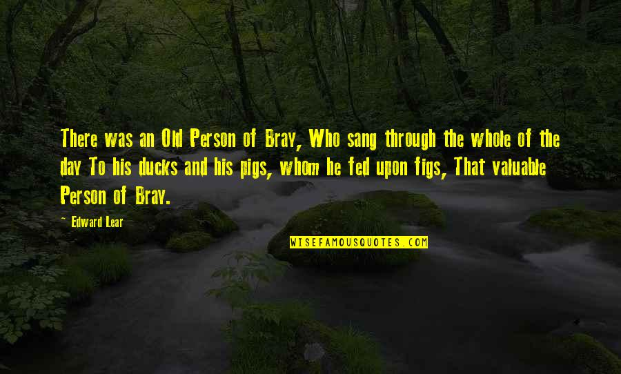 Most Valuable Person Quotes By Edward Lear: There was an Old Person of Bray, Who