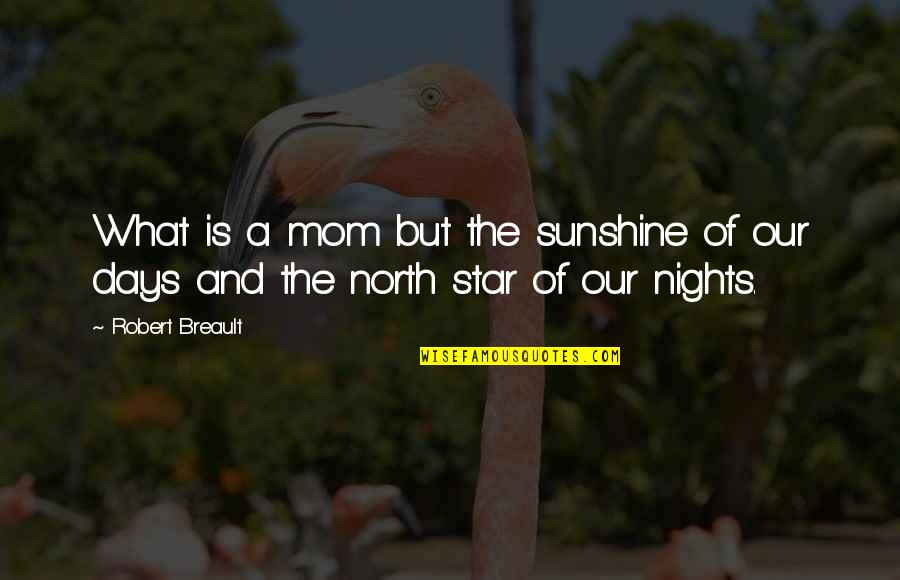 Mother Mom Quotes By Robert Breault: What is a mom but the sunshine of