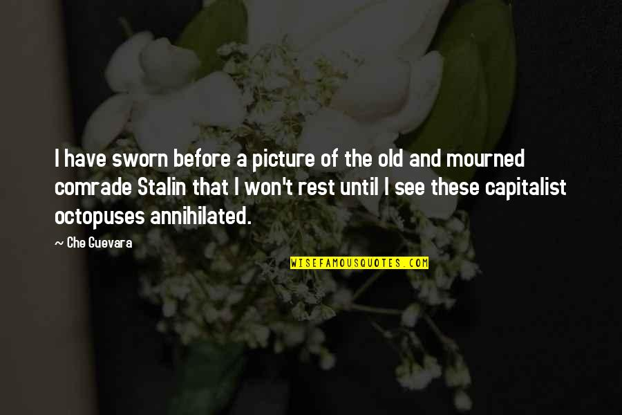 Mourned Quotes By Che Guevara: I have sworn before a picture of the