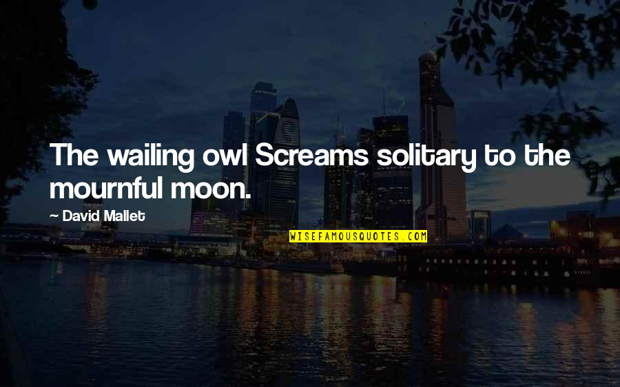 Mournful Quotes By David Mallet: The wailing owl Screams solitary to the mournful