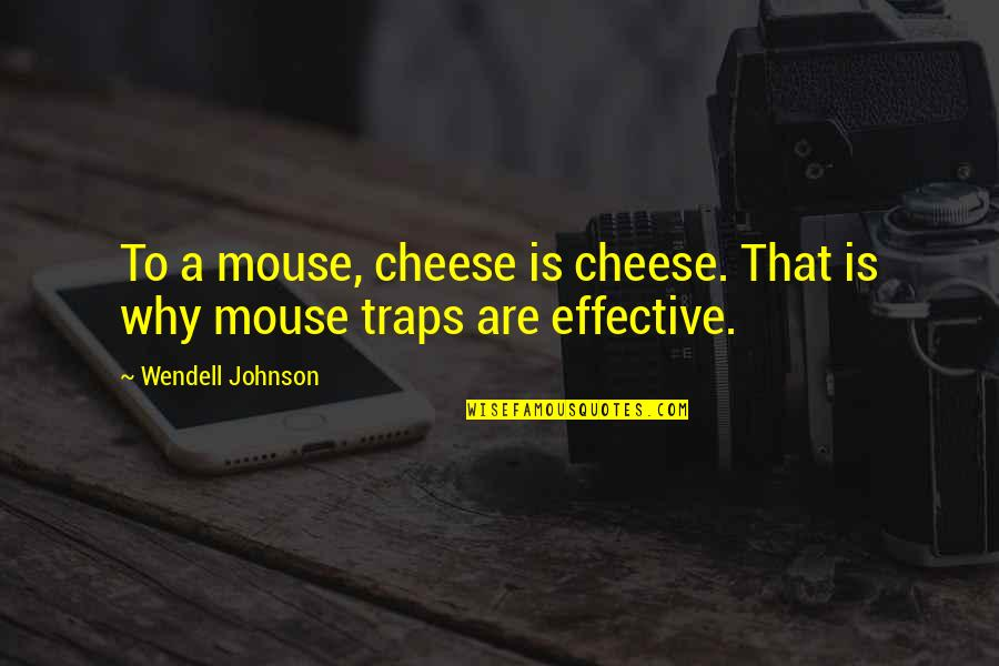 Mouse And Cheese Quotes By Wendell Johnson: To a mouse, cheese is cheese. That is