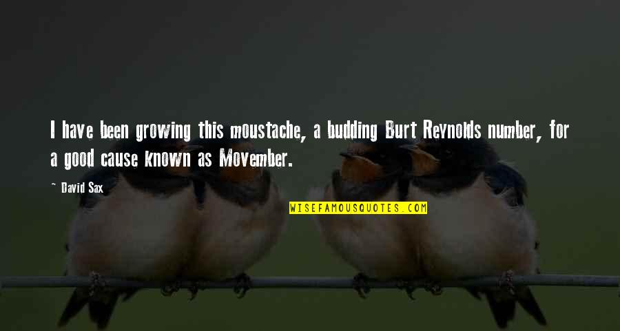 Movember Moustache Quotes By David Sax: I have been growing this moustache, a budding
