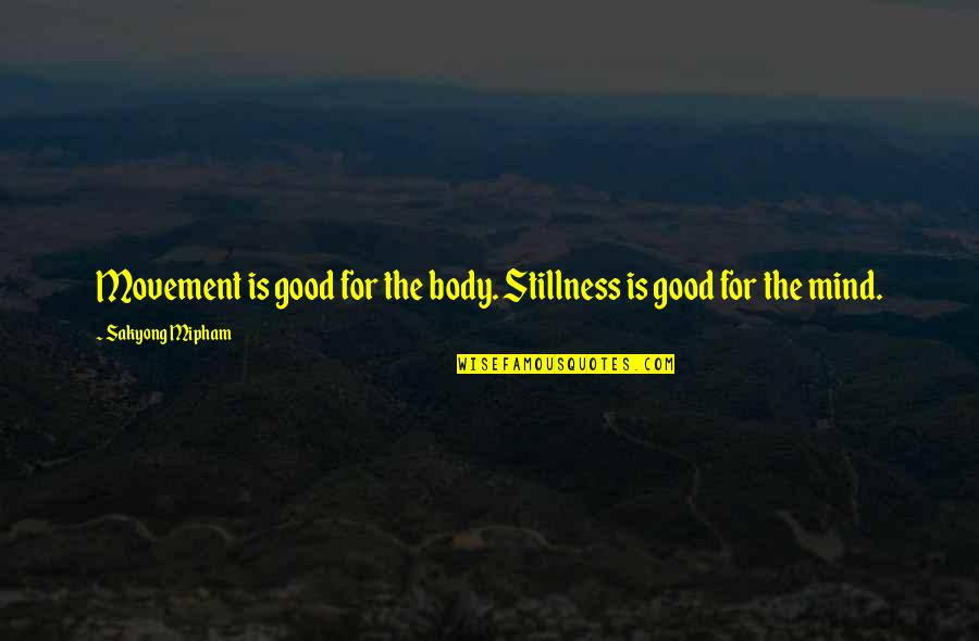 Movement And Stillness Quotes By Sakyong Mipham: Movement is good for the body. Stillness is