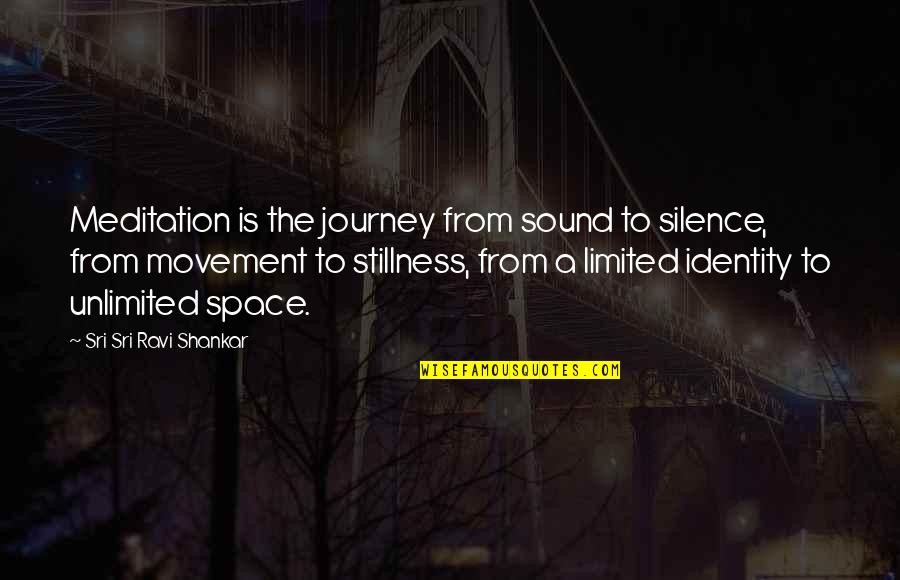 Movement And Stillness Quotes By Sri Sri Ravi Shankar: Meditation is the journey from sound to silence,