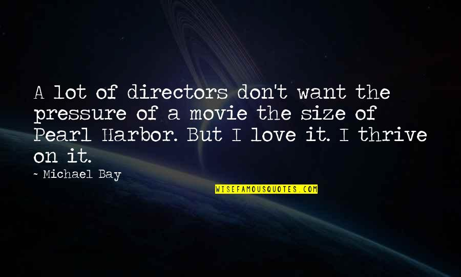 Movie Directors Quotes By Michael Bay: A lot of directors don't want the pressure