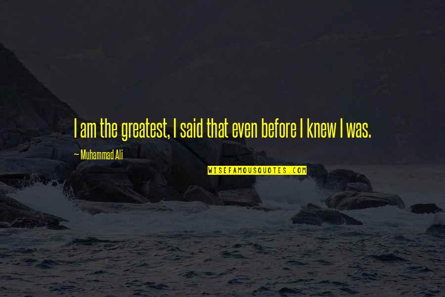 Movie Payback Quotes By Muhammad Ali: I am the greatest, I said that even