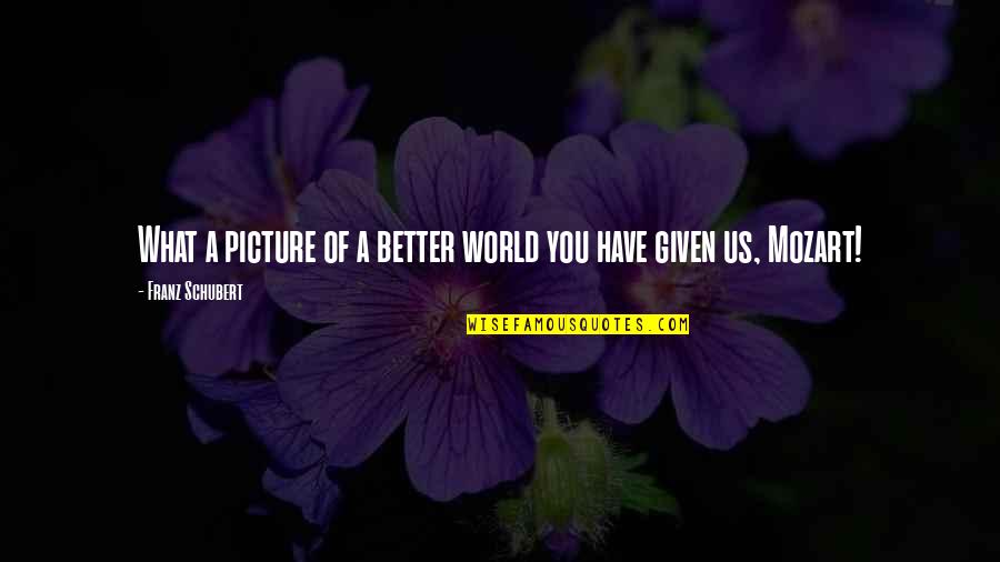 Mozart's Quotes By Franz Schubert: What a picture of a better world you
