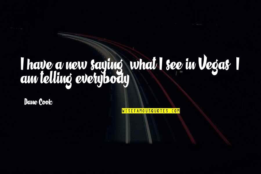 Mr New Vegas Quotes By Dane Cook: I have a new saying, what I see