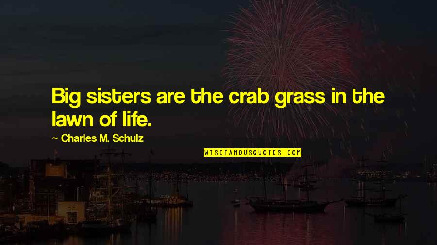 Mr Panos Quotes By Charles M. Schulz: Big sisters are the crab grass in the
