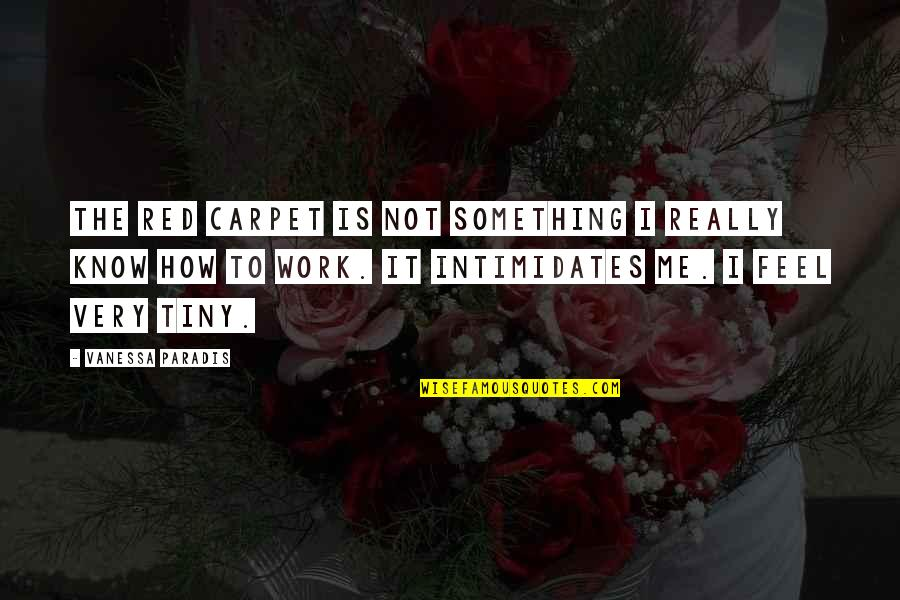 Mr Tiny Quotes By Vanessa Paradis: The red carpet is not something I really
