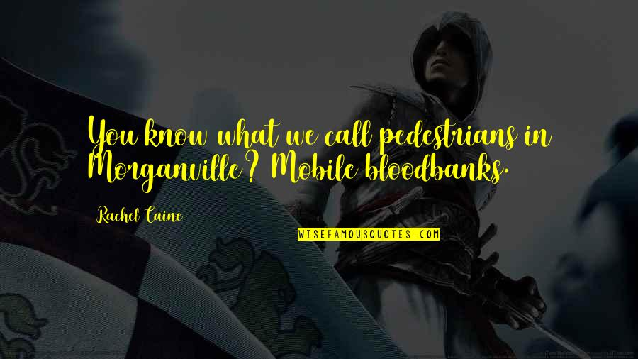 Mrs Danvers Quotes By Rachel Caine: You know what we call pedestrians in Morganville?