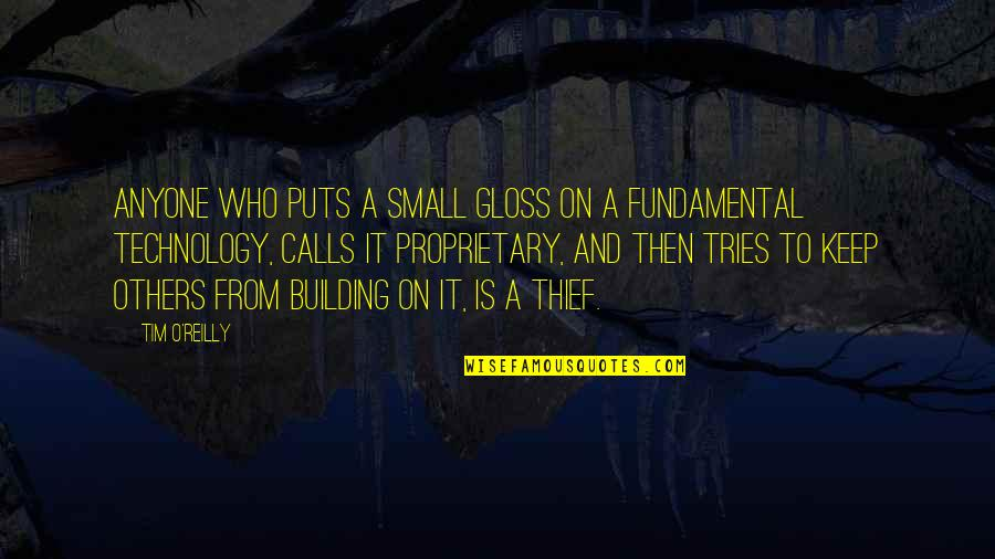 Mrs Pincent Quotes By Tim O'Reilly: Anyone who puts a small gloss on a