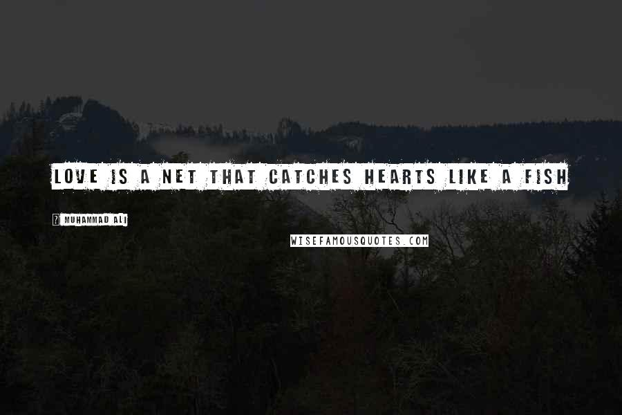Muhammad Ali quotes: Love is a net that catches hearts like a fish
