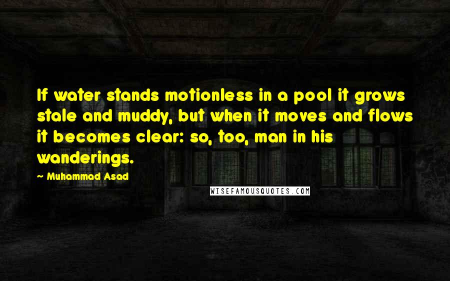 Muhammad Asad quotes: If water stands motionless in a pool it grows stale and muddy, but when it moves and flows it becomes clear: so, too, man in his wanderings.
