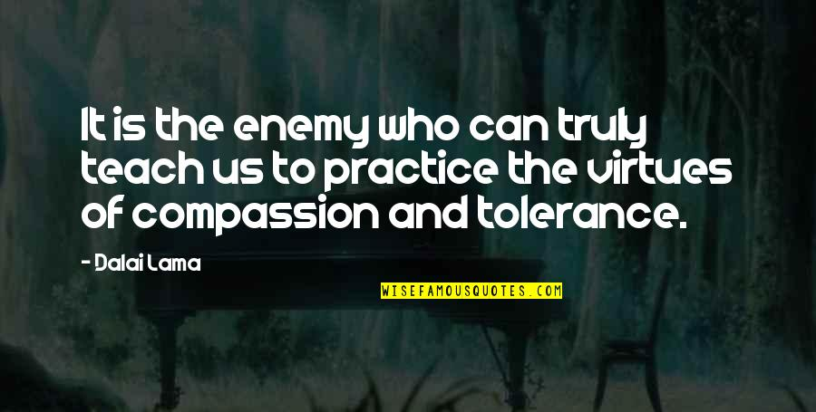 Muhammad Bin Qasim Quotes By Dalai Lama: It is the enemy who can truly teach