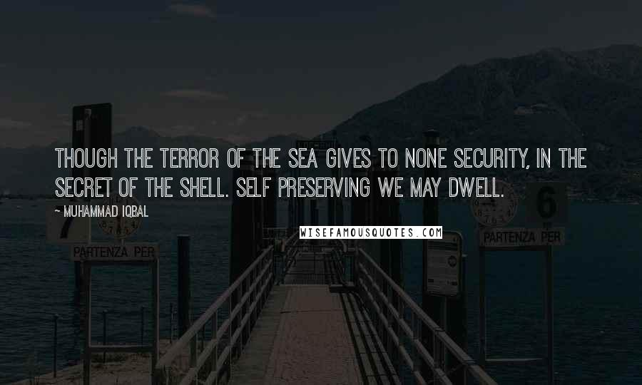 Muhammad Iqbal quotes: Though the terror of the sea gives to none security, in the secret of the shell. Self preserving we may dwell.