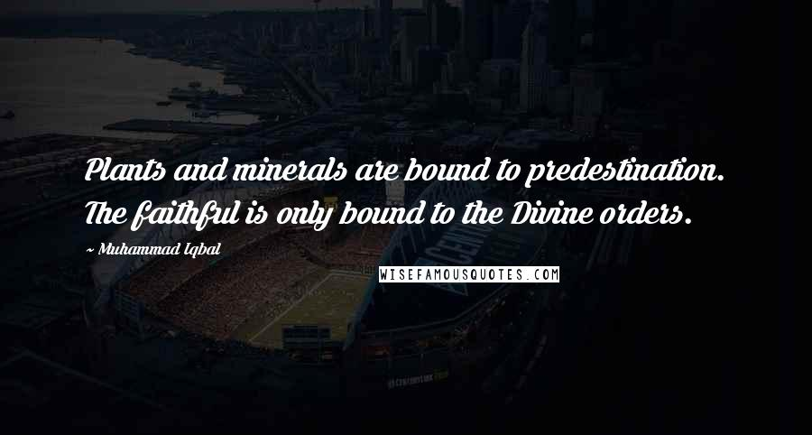 Muhammad Iqbal quotes: Plants and minerals are bound to predestination. The faithful is only bound to the Divine orders.