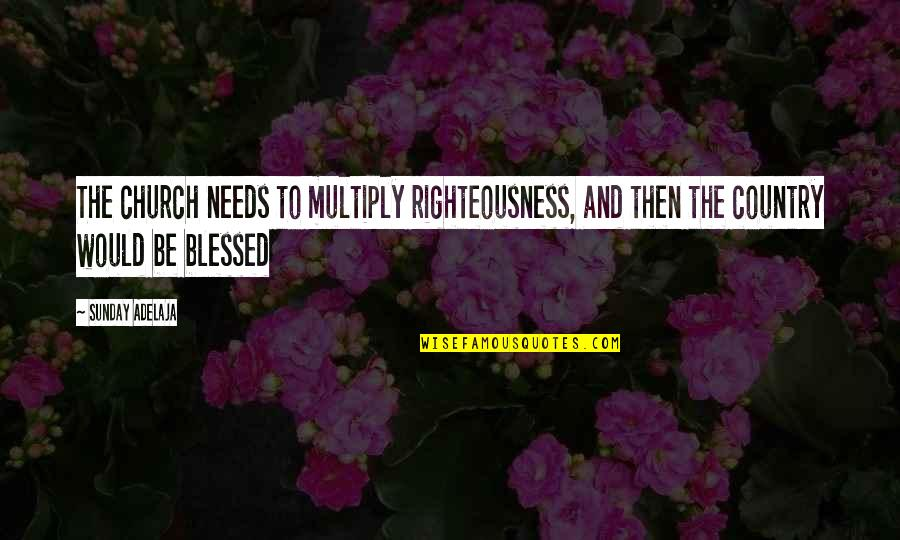 Multiply Quotes By Sunday Adelaja: The church needs to multiply righteousness, and then