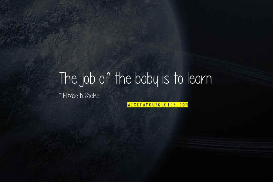 Mural Wallpaper Quotes By Elizabeth Spelke: The job of the baby is to learn.