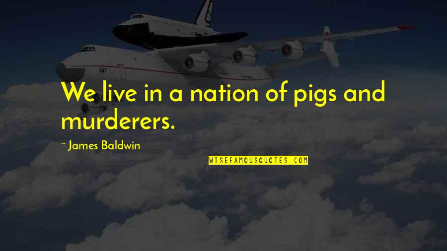 Murderers Quotes By James Baldwin: We live in a nation of pigs and