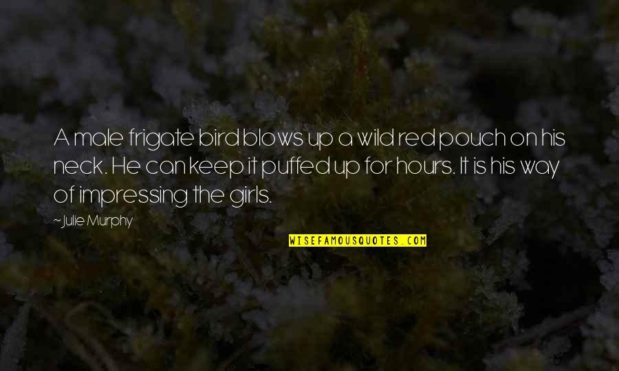 Murphy's Quotes By Julie Murphy: A male frigate bird blows up a wild