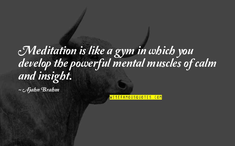 Muscles Quotes By Ajahn Brahm: Meditation is like a gym in which you