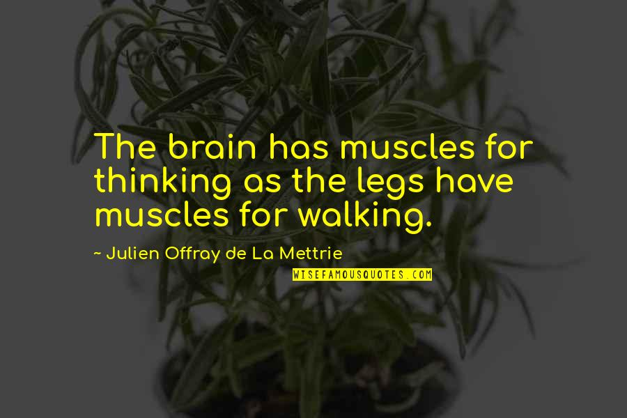 Muscles Quotes By Julien Offray De La Mettrie: The brain has muscles for thinking as the