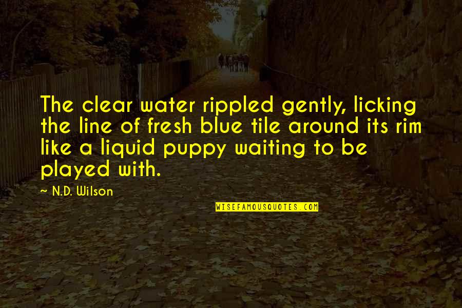 Museumlike Quotes By N.D. Wilson: The clear water rippled gently, licking the line