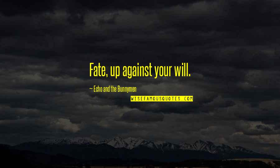Music And Lyrics Quotes By Echo And The Bunnymen: Fate, up against your will.