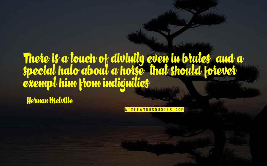 Music Gigs Quotes By Herman Melville: There is a touch of divinity even in