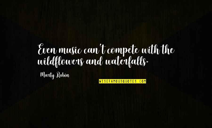 Music In Nature Quotes By Marty Rubin: Even music can't compete with the wildflowers and