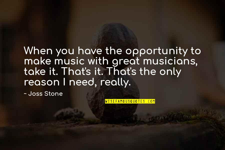 Music Musicians Quotes By Joss Stone: When you have the opportunity to make music