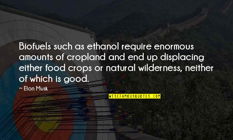 Musk Quotes By Elon Musk: Biofuels such as ethanol require enormous amounts of