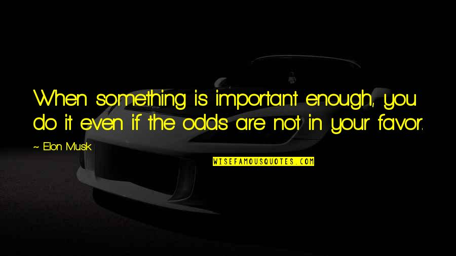 Musk Quotes By Elon Musk: When something is important enough, you do it