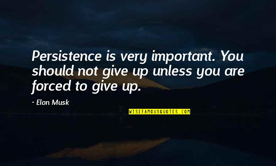 Musk Quotes By Elon Musk: Persistence is very important. You should not give