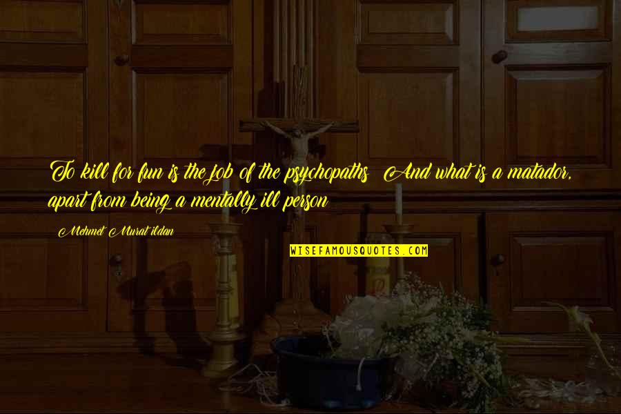 Mutual Understanding Love Relationship Quotes By Mehmet Murat Ildan: To kill for fun is the job of